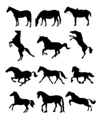 Vector silhouettes of horses