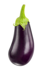 Isolated eggplant. One fresh eggplant with stem isolated on white background