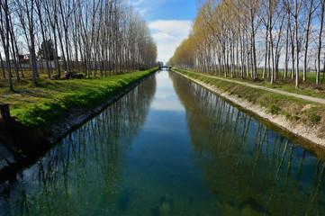 Canale con chiusa e alberi