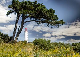 Lechtturm Dombusch auf der Insel Hiddensee