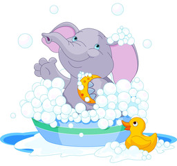 Elephant having a bath