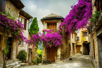 Garden Poster Nice art beautiful old town of Provence