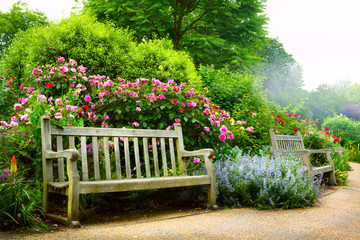 Photo sur Plexiglas Jardin Art bench and flowers in the morning in an English park