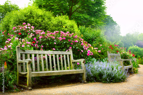 Fototapete Art bench and flowers in the morning in an English park