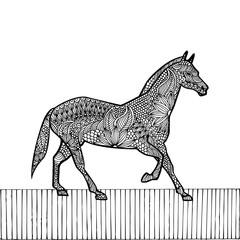 Black Horse- Chinese zodiac