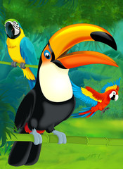 Cartoon jungle - illustration for the children