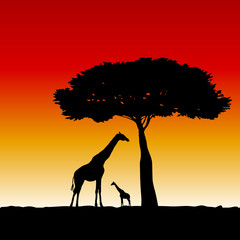 giraffe art vector silhouette illustration