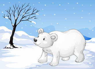 A snowbear walking