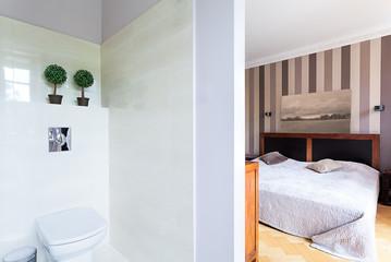 Vintage mansion - bedroom with toilet