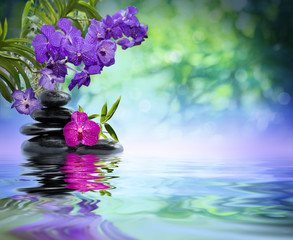 Fototapete - violet orchids, black stones on the water