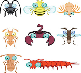 graphic insects and arthropod include, fly, spider, ant