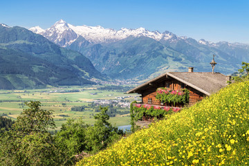 Traditional mountain farm in the Alps Wall mural