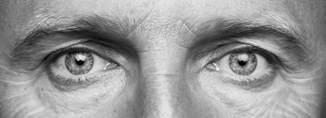 Panorama of men's eyes