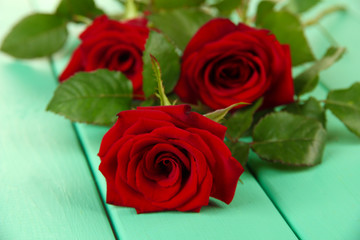 Beautiful roses, on color wooden background