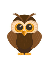 Vector owl bird, isolated on white background