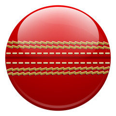 cricket ball isolated on a white background