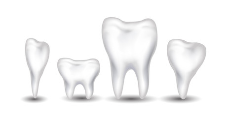 tooth collection for you design