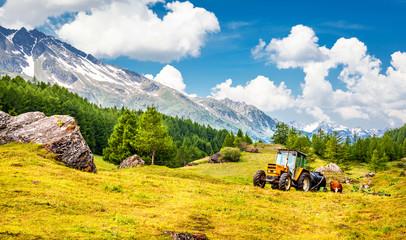 Picturesque farming
