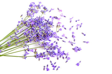 Wall Mural - Fresh lavender