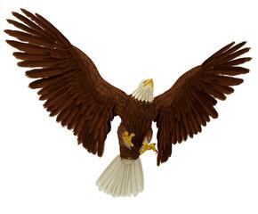 Fototapete - wide eagle landing