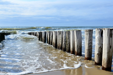 Wall Mural - breakwaters on the beach at the north sea in Domburg Holland