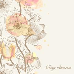 vintage anemones