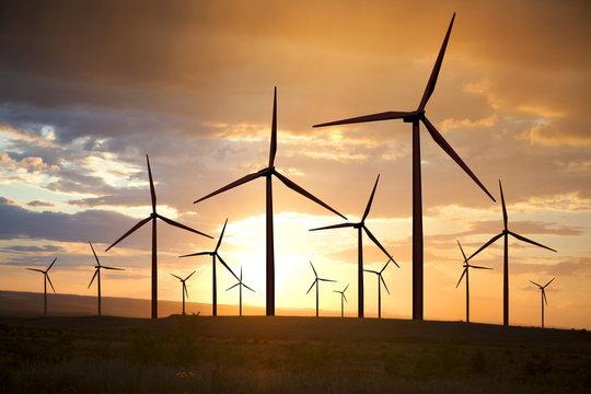 wind turbines on sunset sky