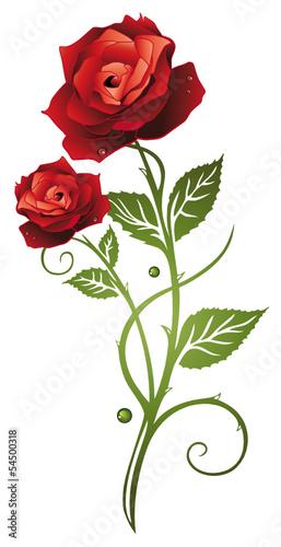 rote rosen mit bl ttern symbol der liebe in love stockfotos und lizenzfreie vektoren auf. Black Bedroom Furniture Sets. Home Design Ideas