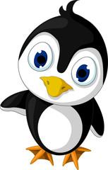 cute little penguin cartoon