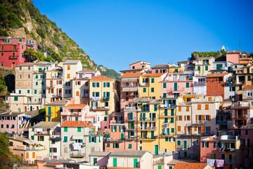 Printed kitchen splashbacks Purple Manarola, Cinque Terre, Italy