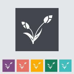 Tulip single flat icon.