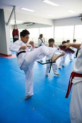 Taekwondo kick class