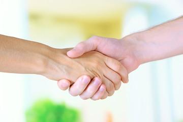 Handshake on light background