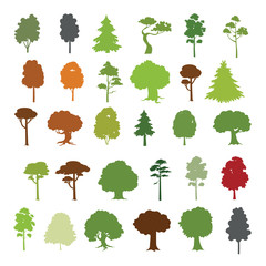 Forest trees vector collection