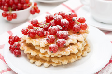 Belgian waffles with red currant with powdered sugar