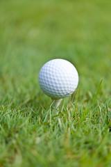 golfball und golfschläger tee auf grünem rasen nahaufnahme