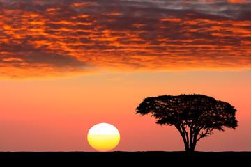 Staande foto Zuid Afrika Sunset in Africa