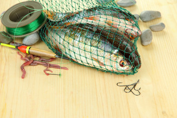 Fishes in fishing net on wooden background