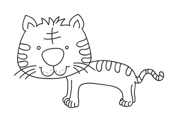 illustration of isolated hand drawn tiger vector