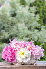 Stunning peonies in white wicker basket on rustic wooden table i