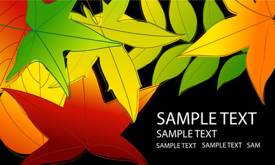 Vector colorful autumn leaves background illustration