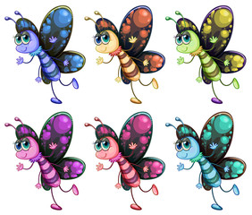 Six colorful butterflies