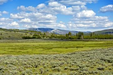 Wall Mural - Yellowstone Landscape