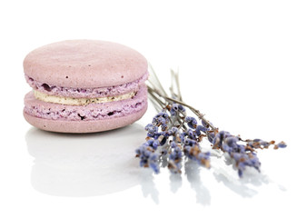 Lavender macaroon isolated on white