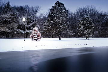 Magical Light Illuminates Snow Covered Christmas Tree Along Lake