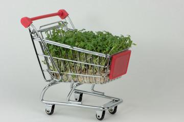 Kresse einkaufen