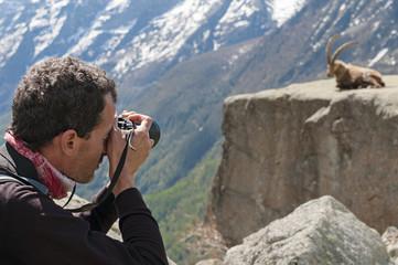 fotografo naturalista. Parco Nazionale Gran Paradiso, Italy