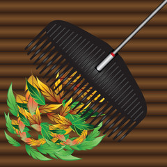Rakes and fallen leaves