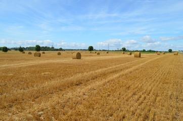 Normandie, la plaine de Caen
