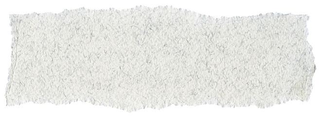 Fiber Paper Texture - White with Torn Edges